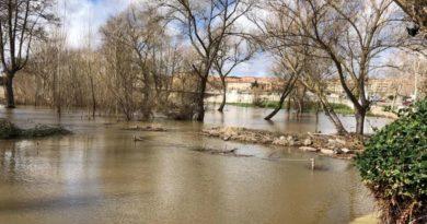 mejoras de los márgenes del rio tormes y playas de la aldehuela Salamanca