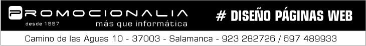 promocionalia diseño de páginas web salamanca